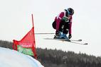 Verletzungspech im Schweizer Ski Cross Team - ©Sebastien Anex