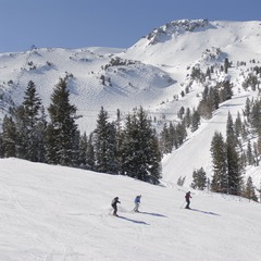 Mammoth Mountain winter
