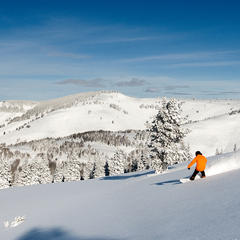 The aftermath of a storm in Blue Sky Basin–fresh tracks galore. - © Daniel Milchev / Vail