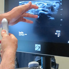 Ultrasound demo - © Heather B. Fried