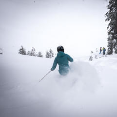 Alpine Meadows powder - © Squaw Valley-Alpine Meadows