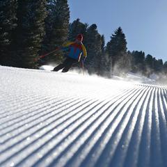 Le piste della Val di Fiemme sul podio per migliore innevamento - ©Val di Fiemme Facebook