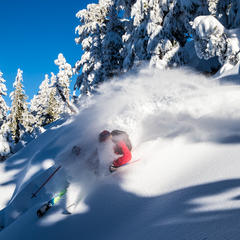 Mammoth powder - © Liam Doran