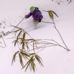 How To Ski Japan: The Skiing  - ©Linda Guerrette