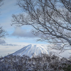 Photo Gallery: Japan's Breathtaking Views & Leg-Breaking Snow - ©Linda Guerrette
