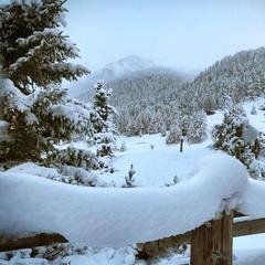 Half a metre of snow forecast for the Alps - ©Facebook Livigno