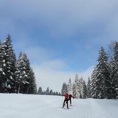 Les Montagnes du Jura, paradis du ski nordique - ©CRT FRANCHE-COMTE