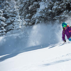 Powder skiing at Snowbird, Utah - © Scott Markewitz