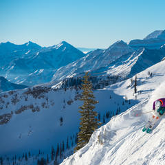 Skiing at Snowbird, Utah - © Scott Markewitz