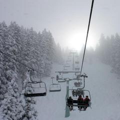 Powder in Mayrhofen - © Skiinfo.de