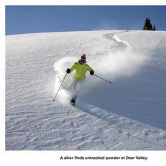 Skier enjoys untouched powder