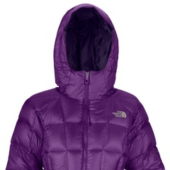 Invest in a Ski Jacket that Protects You from Mother Nature: 2013 North Face Destiny Down Jacket
