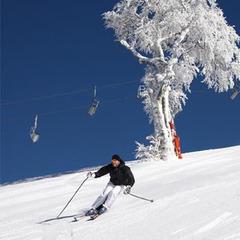 App per sciare: bollettini neve e mappe!